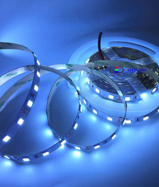 LED 5054