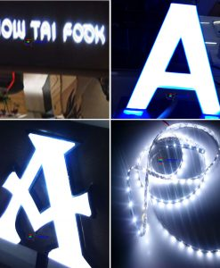 logo led day